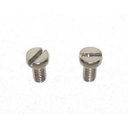 Pair of inox screws 10mm